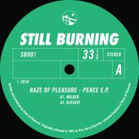RAZE OF PLEASURE - PEACE EP : 12inch