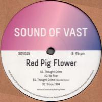 RED PIG FLOWER - THOUGHT CRIME (incl. WAREIKA Remix) : SOUND OF VAST (HOL)