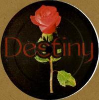 UNKNOWN ARTIST - Destiny : IN THE FUTURE (HOL)