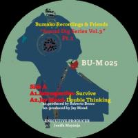 BUMAKO RECORDINGS & FRIENDS - Sound Dig Series Vol. 3 (Pt. 1) : 12inch
