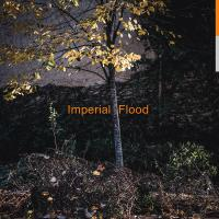 LOGOS - Imperial Flood : DIFFERENT CIRCLES (UK)