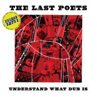 THE LAST POETS - Understand What Dub Is : LP