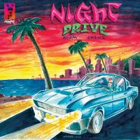 ADAM CHINI - Night Drive : LP