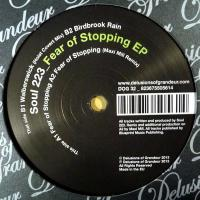 SOUL 223 - Fear Of Stopping EP : 12inch