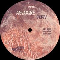 JKRIV - Aguaxirê : ROCKSTEADY DISCO (US)