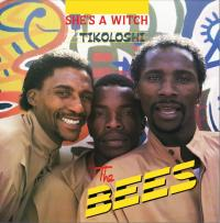 THE BEES - SHE'S A WITCH - TIKOLOSHI : AFROSYNTH (HOL)