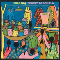 PULO NDJ ? - Desert To Douala : WONDERWHEEL RECORDINGS (US)