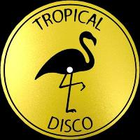 VARIOUS ARTISTS - Tropical Disco Records, Vol. 10 : 12inch