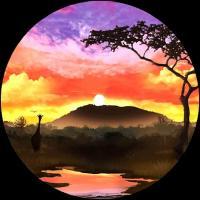 KOTA MOTOMURA - Foreign Wind EP : 12inch