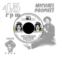 MICHAEL PROPHET / ROOTS RADICS - Hold On To What You Got / Cry Of The Werewolf : 17 NORTH PARADE (US)