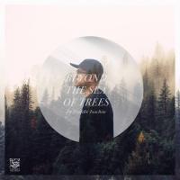 FREDDIE JOACHIM - Beyond The Sea Of Trees : 2LP