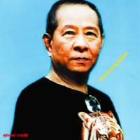 VARIOUS - スリン・パークシリの仕事:特選ルークトゥン集 1960s-80s : EM RECORDS (JPN)