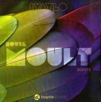 IVAYLO - House Moult : 12inch