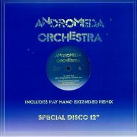 ANDROMEDA ORCHESTRA - Don't Stop (Ray Mang Mix) : FAZE ACTION (UK)
