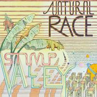 STUMP VALLEY - NATURAL RACE : 2x12inch
