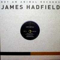 JAMES HADFIELD - Buried Answers : NOT AN ANIMAL (UK)
