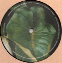 EDANTICOF - The Metamorphosis of Plants : 12inch