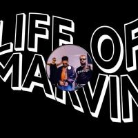 LIFE OF MARVIN - In The Night : 12inch