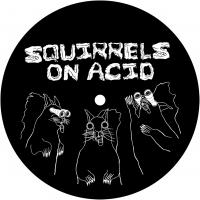 VARIOUS - SQUIRRELS ON ACID : 12inch