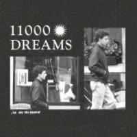 JAN VAN DEN BROEKE - 11000 DREAMS : STROOM (BEL)
