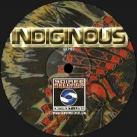 VARIOUS ARTISTS - Indiginous EP : 12inch
