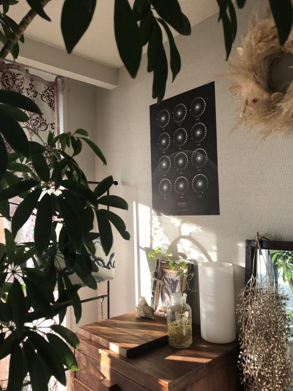 TSUKISHIZUKU & QOTAROO - Moon Calender 2020 : POSTER gallery 4