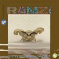 RAMZI - Multiquest Niveau 1: Camouflé : LP
