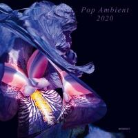 VA - Pop Ambient 2020 : 3LP