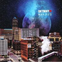 VARIOUS - WAAJEED - Detroit Love Vol.3 : 2LP