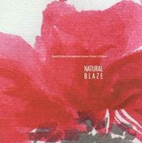 BLAZE - Natural Blaze : 2LP