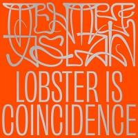MEHMET ASLAN - Lobster Is Coincidence : 12inch+ DL