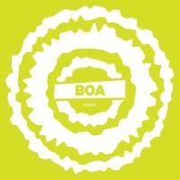 BOA - BOA w/ Mosca Remix : 12inch