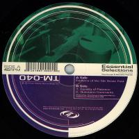 THEO PARRISH & MARSELLUS PITTMAN - Essential Selections Volume 2 : 12inch