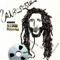 ALBOROSIE MEETS ROOTS RADICS - Dub For The Radicals : GREENSLEEVES (UK)