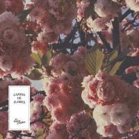 EL BUHO - Camino De Flores : LP
