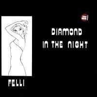 FELLI - Diamond In The Night : 12inch