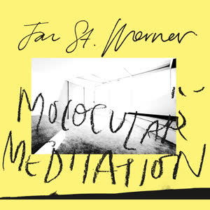 JAN ST. WERNER(MOUSE ON MARS) - Molocular Meditation feat. Mark E. Smith : EDITIONS MEGO (AUS)