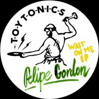FELIPE GORDON - Wait On Me EP : TOY TONICS (GER)
