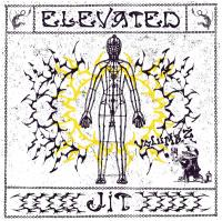 VARIOUS - Elevated Jit Vol.2 : 12inch