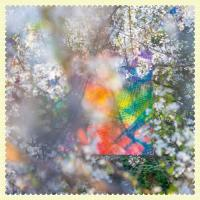 FOUR TET - Sixteen Oceans : 2LP