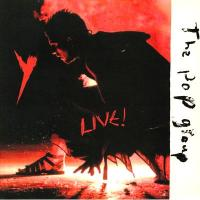 THE POP GROUP - Y Live! : MUTE (Europe)