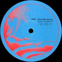 SEB WILDBLOOD - Hazy House EP : 12inch