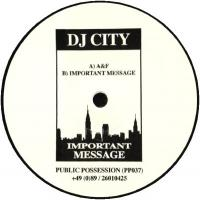 DJ CITY - Important Message : PUBLIC POSSESSION (GER)