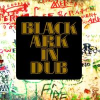 BLACK ARK PLAYERS - Black Ark In Dub : LP