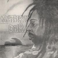 BULLWACKIES ALL STARS - Natures Dub : LP