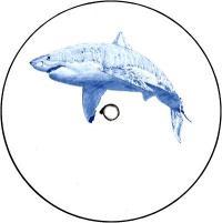 KYLE HALL - The Shark EP : 12inch