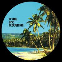 FLYING DISC FEDERATION - A Room With A View : 12inch