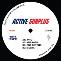 ACTIVE SURPLUS - Active Surplus : 12inch