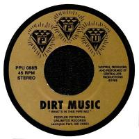 CENTRAL AYR PRODUCTIONS - DIRT MUSIC : PEOPLES POTENTIAL UNLIMITED (US)