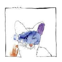 NICO STOJAN - Cardano EP : OUÏE (GER)